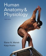 Marieb, Hoehn, Human Anatomy & Physiology, 8th Edition